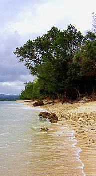 Vanuatu 5 by Elisabeth Dubois