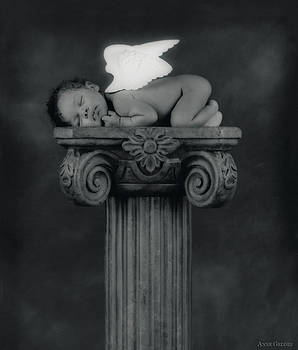 Anne Geddes - Varjanare As An Angel