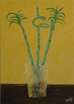 Vase Of Bamboo by Gunter  Tanzerel