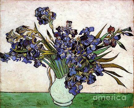Van Gogh - Vase Of Irises