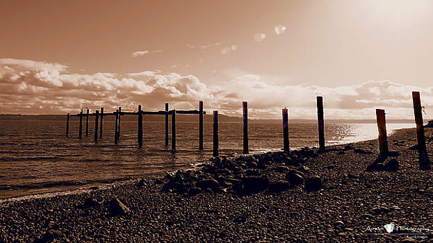 Vashon Pilings by Stephanie McGuire