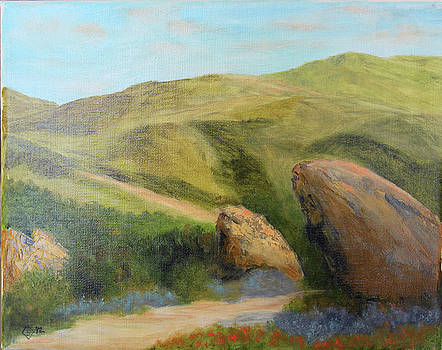 Vasquez Rocks Morning by Terry Sonntag