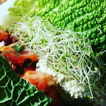Vegan Food by Tamara Sushko