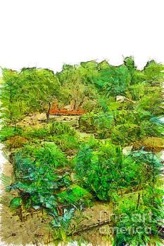 Vegetable garden by Giuseppe Cocco