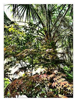 Joan  Minchak - Vegetation Takeover