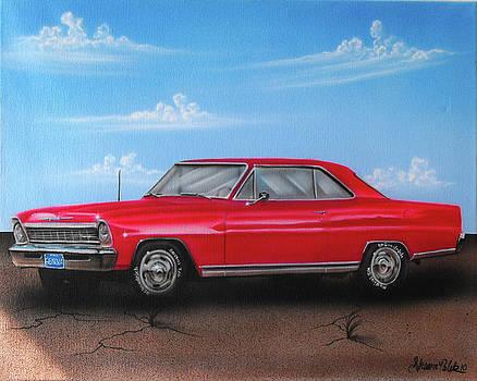 Vehicle- Red Car by Shawn Palek