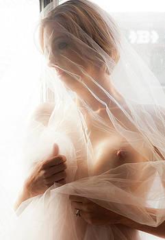 Veiled 2 by Daniel Love