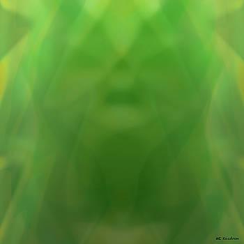 Veiled by ME Kozdron