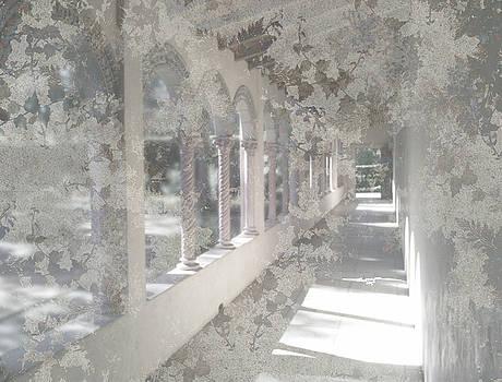 Veiled Walkway by Marsha Tudor