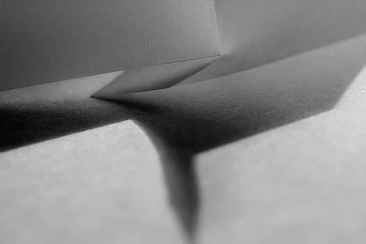 Veils, No. 24 by Bernice Williams