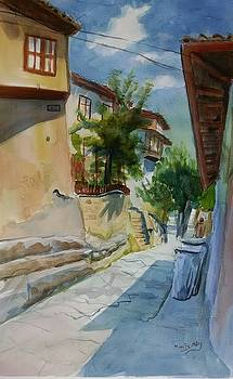 Veliko Turnavo street by Mimi Boothby