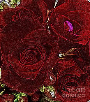 Velvet Roses by Donna Cain