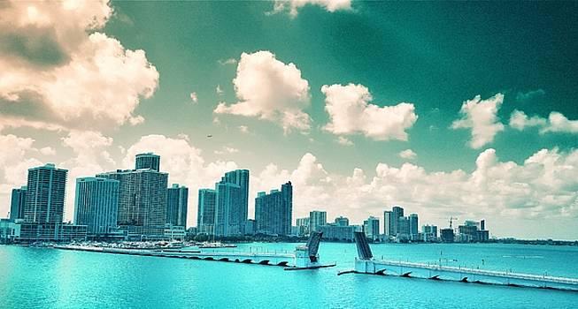 Venetian Causeway Miami  by Roland Macias