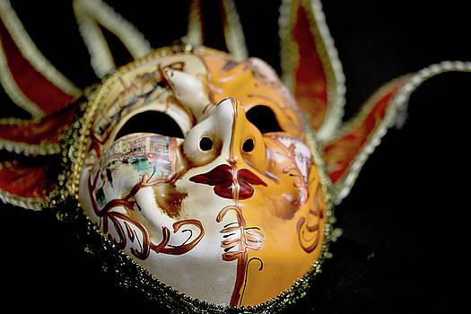 Venetian Mask 1 by Steve Purnell