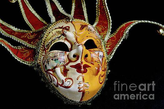 Venetian Mask 4 by Steve Purnell