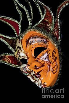 Steve Purnell - Venetian Mask 5