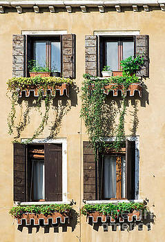 Venetian windows with flowers by Deyan Georgiev