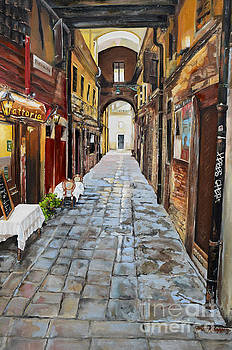 Venezia - Alley on Parangon in Venice by Jan Dappen