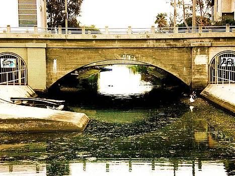 Venice Beach Canal by Daniele Smith