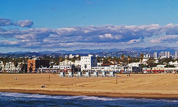 Venice Beach in Fall by Daniele Smith