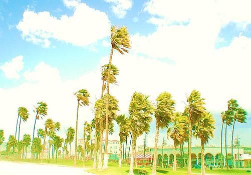 Venice Beach in Windy Pastels by Daniele Smith