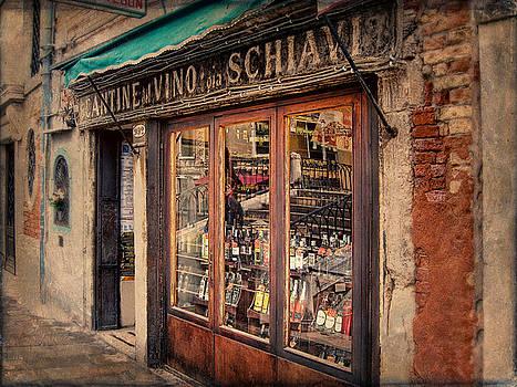 Venice Italy by Terri Roncone