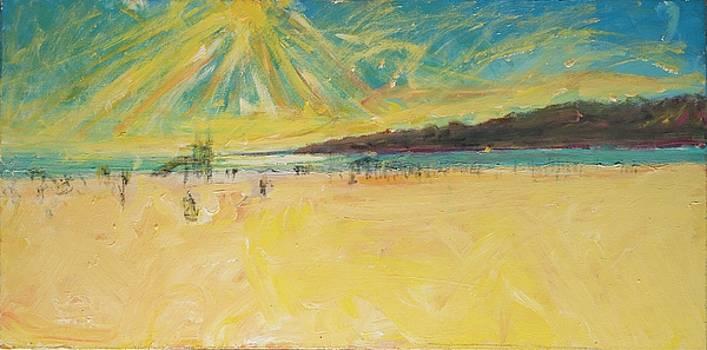Venice Sunset by Patrick Ginter