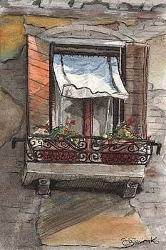 Venice Window by Tahirih Goffic