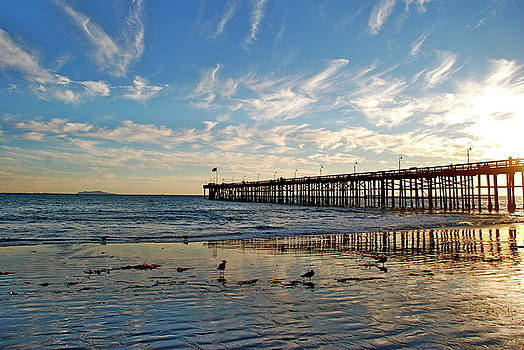 Ventura Pier at Sunset by Liz Vernand