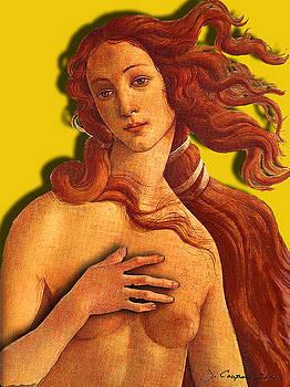 Venus 2 by Jerry Cooper