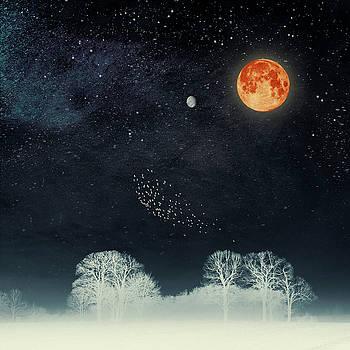Venus and Moon Night by Dirk Wuestenhagen