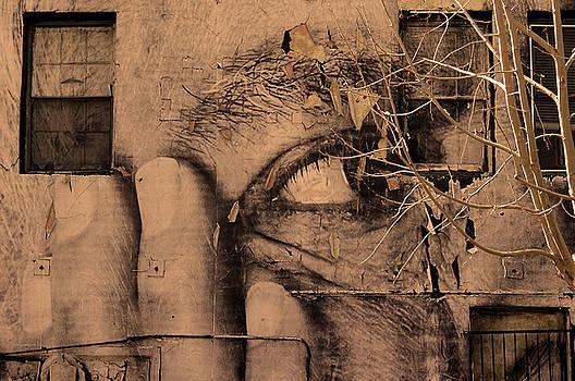 Venus Beach Wall Art2 by Jeff Burgess