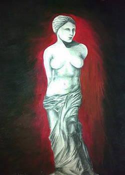 Venus by Tamer Elsamahy