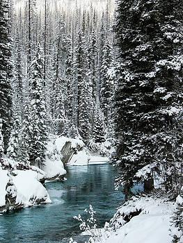 Verdant creek - Winter 1 by Stuart Turnbull