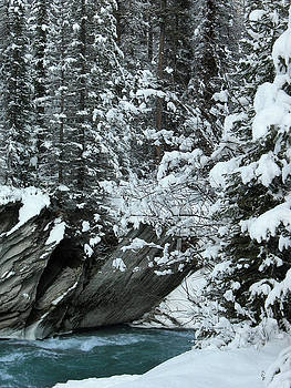 Verdant creek - winter 2 by Stuart Turnbull