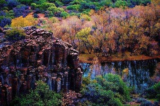 Verde River Canyon by Helen Carson