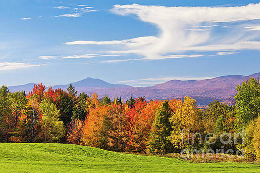 Vermont Autumn View by Alan L Graham