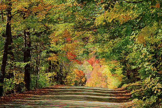 Vermont country Road under fall colors by Jeff Folger