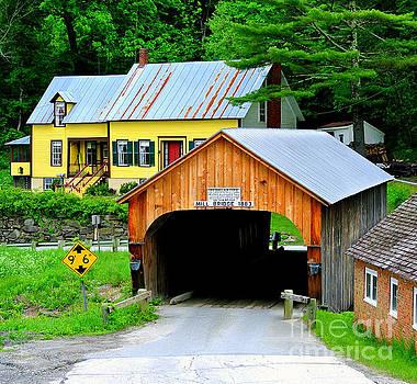 Vermont by Elfriede Fulda