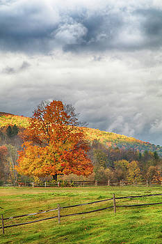 Vermont fall colors after the rain by Jeff Folger