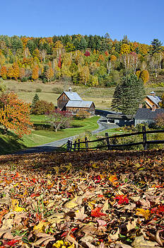Vermont Farm In Autumn by Donna Doherty