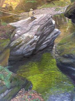 Vermont Fisherman by Laurel Ellis