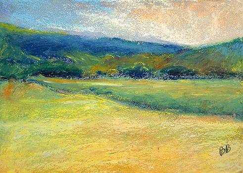 Vermont Meadow by Bethany Bryant