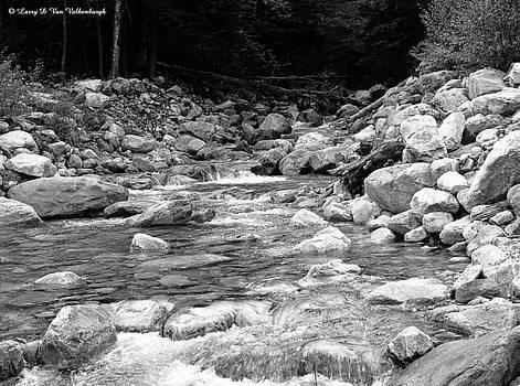 Vermont Mountain Stream by Larry Van Valkenburgh