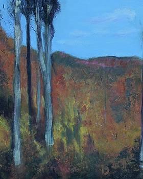 Vermont Mountains by Barbara Joyce
