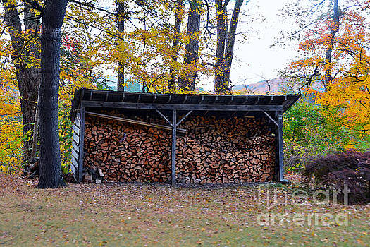 Vermont Wood Shed by Catherine Sherman