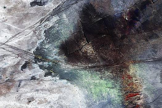 Verschroeide aarde by Arie Van Garderen