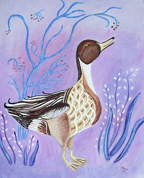Version of a Pintail by Belinda Lawson