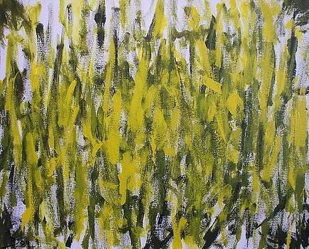 Vert by Rod Schneider
