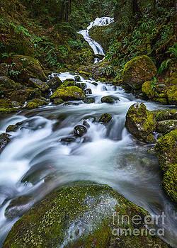 Jamie Pham - Vertical Bunch Creek Falls